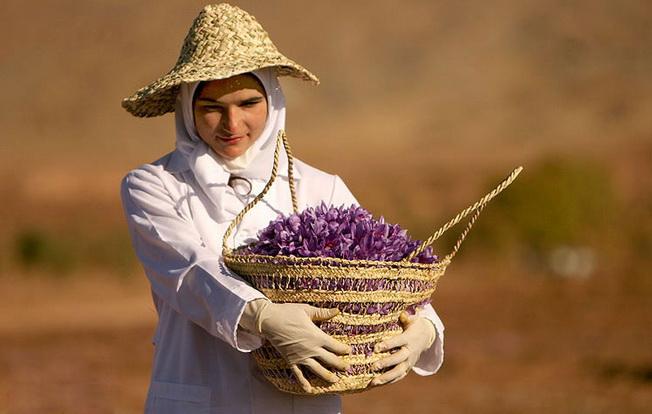 iranian_saffron_woman 652
